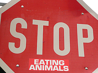 stop-eating-animal